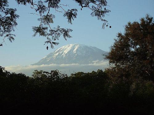 Kilimanjaro Pub Dom_med