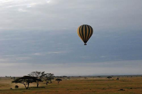 Floating along the Serengeti