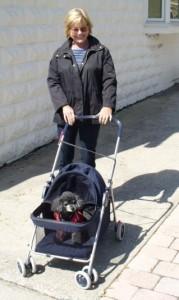 FCWC dog stroller